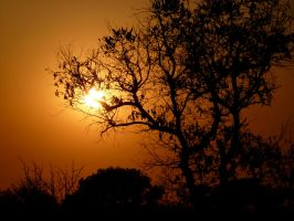 Another African Sunset by Bintavivi
