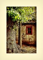 Red Window HDR by KhaleeqXaman