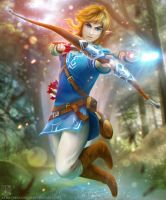Zelda Wii U: Link - Scrap by EternaLegend