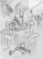 12-28 Spidey Sketches by hdub7