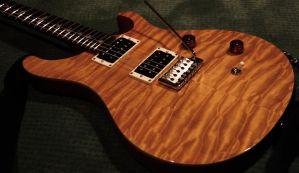 Paul Reed Smith Custom 24 SE by DavidSchwartz