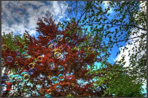 Bubbles HDR by gogo100878