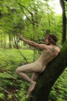 wild.archery by creativeIntoxication