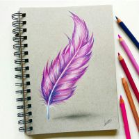 Feather with colored pencil by Tinesdierportretten