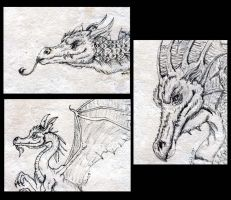 3 Pen and Ink Dragon ACEOs by The-GoblinQueen