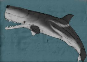 Seas of the past: Melville's Leviathan by Austroraptor
