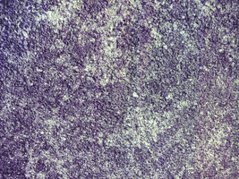 TEXTURE #009 by Atelophobia-Graphics