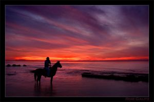 Sunset Horseman by RoieG