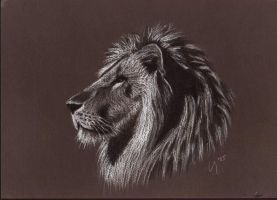 Lion by itilien