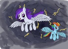 Riding the Storm: The Last Flight by VittorioNobile