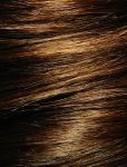 Brown Hair Texture Stock by Enchantedgal-Stock
