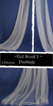 Veil Stock Package 2 by almudena-stock