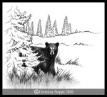 Black Bear I by Qiu-Ling