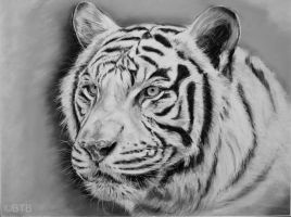 Tiger Pastel by BTBArtist