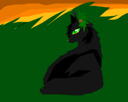 Hollyleaf :) by Dragoonroot