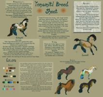 Tonamitl Horse Breed Sheet by IceVolvagia101