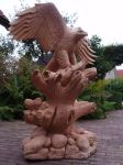 Woodcarver Eagle with salmon in progress 16 by woodcarve