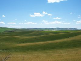 Green Rolling Hills by farralynria