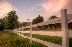On the Fence HDR by joelht74