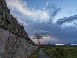 The Wall by peterpateman