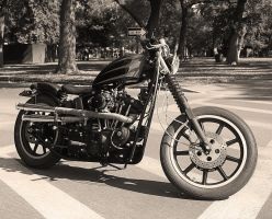 79 Ironhead Shovel bw by StallionDesigns