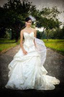 Bridal Gown Photoshoot 9 by Shooter1970