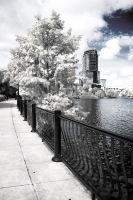 Infrared City Park by jGladys5