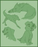 Canine Sketches -Old- by Nyaasu