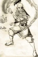 Zuko by IceBittenDuchess