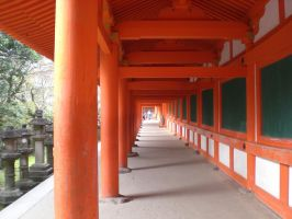 Shinto shrine walkway by DISC-Photography