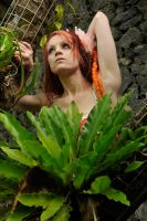 Angel - dreads amongst ferns 3 by wildplaces