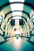 central station dresden by ffmdotcom