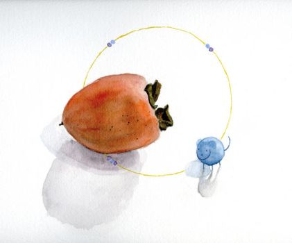 pooky and the persimmon by lamaha