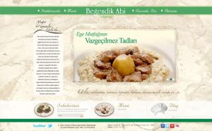 Begendik Abi Web Interface Design by yarabandi
