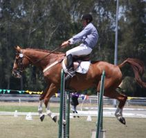 STOCK Showjumping 421 by aussiegal7