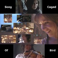 Lindsey Stirling Song of Caged Bird Video 768x768 by SeraphSirius