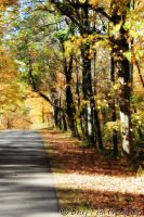 Autumn road by kungfudemoness