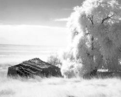 Infrared Scenic by wildfotoguy