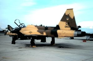 Brown Camo Willie F-5B by F16CrewChief
