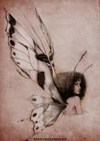 A fairy by chicourano