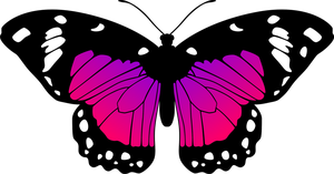 Butterfly (Purple and Pink) by Eiluvision
