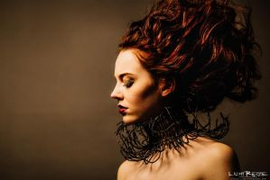 the necklace by LichtReize