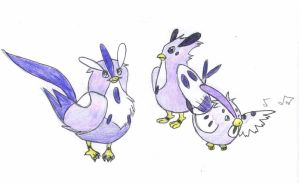 Remake Quails by Madroller