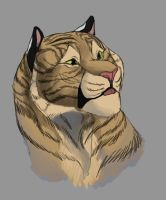 Fluff Ball by IneraBelle
