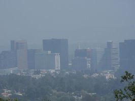 Los Angeles 2 by obliteratedstock
