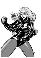 Heroine: Black Canary by E-Mann