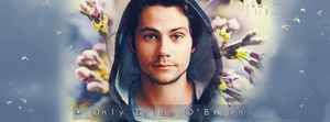 Only Dylan O'Brien by N0xentra