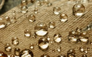 Raindrops on a Feather by webcruiser