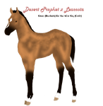 Leucosia x Desert Prophet Bloodline Auction by Secret-Z