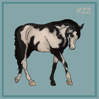 22 Black overo by EquineRibbon
